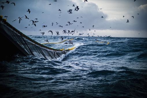 Fish boat vessel fishing in a rough sea 1132370423