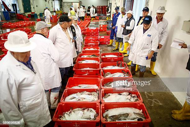 Newlyn photos et images de collection getty images for Fish market long island