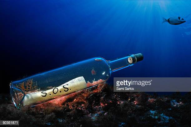 Fish by bottle with SOS message, on ocean floor