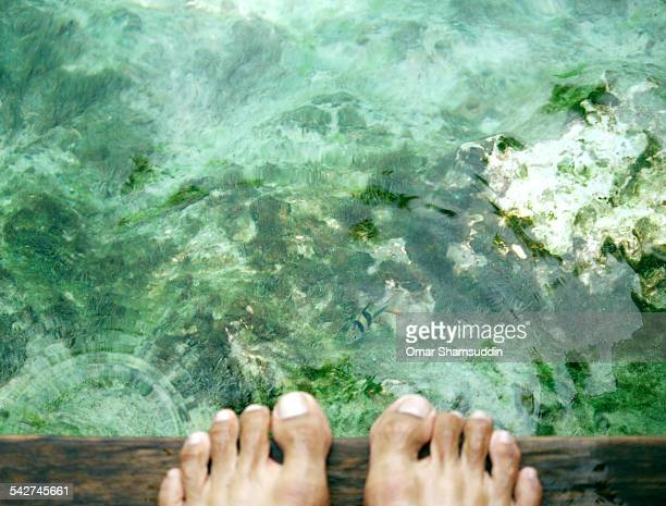 fish by the feet - omar shamsuddin stock pictures, royalty-free photos & images