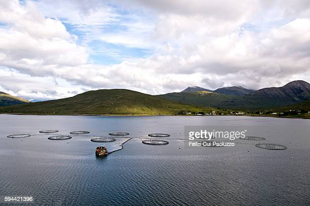 Fish Cages in the loch sligachan of Isle of Skye Scotland