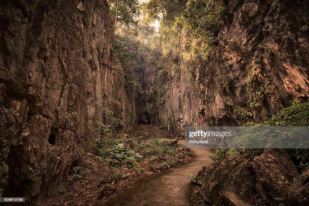Fish Cave in Mae Sai, Thailand : Stock Photo