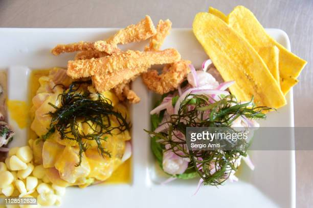 fish ceviche - lima animal stock pictures, royalty-free photos & images
