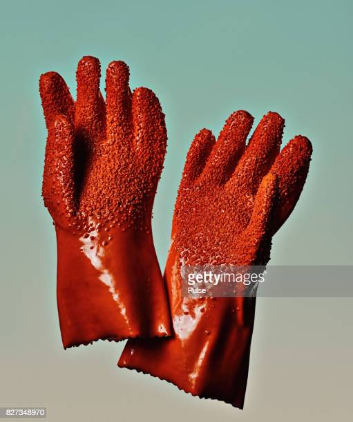 Cleaning equipment stock photos and pictures getty images for Fish cleaning gloves