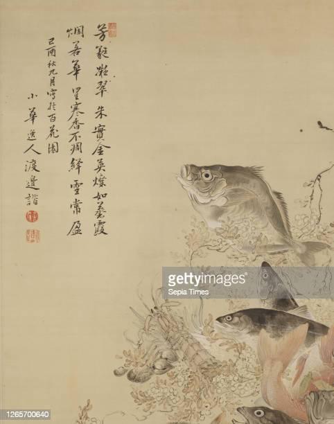 Fish, Crustaceans and Vegetables, Shōka Watanabe , Edo ink, color and gofun on silk, 97-3/4 x 41-3/8 in. , Signed: Shoka itsujin Watanabe Kai...