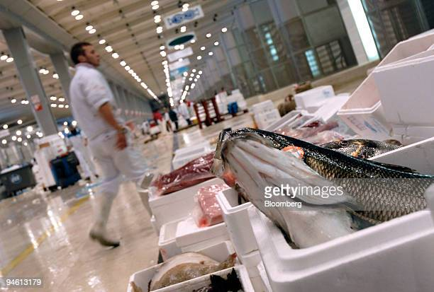 Fish displayed in the Rungis market in the Paris suburb of Rungis France on Friday Sept 28 2007 Rungis a distribution point of food not only for...
