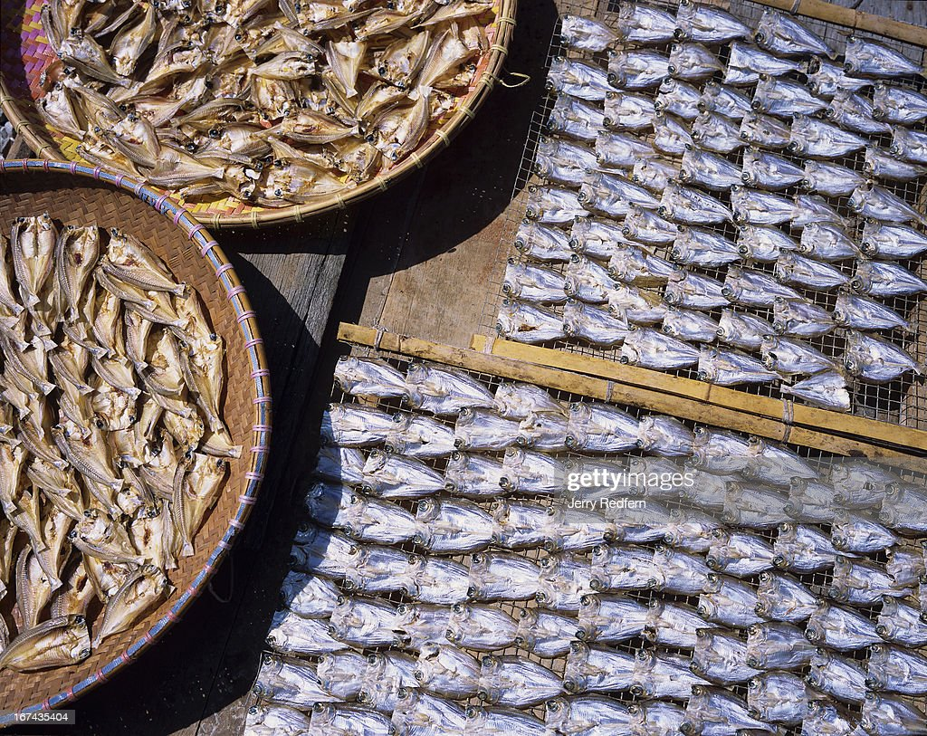 Fish dry in the powerful sun on a dock in the capital city's famous Kampung Ayer, the 28 villages on stilts over the water across from the main part of the capital..