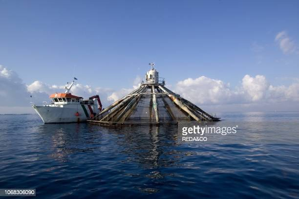 Fish farm Gulf of Salerno Campania Italy
