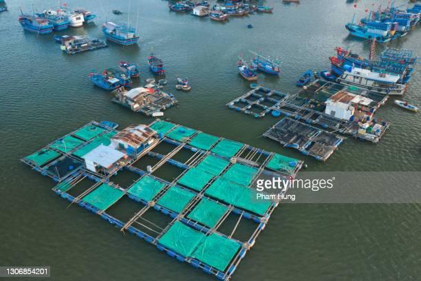 fischfarmen am fluss quan tuong - vertäut stock-fotos und bilder