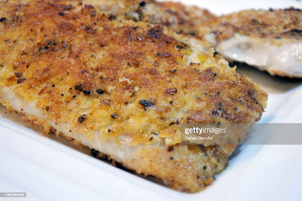 Fish Filet Served on a Plate : Stock Photo