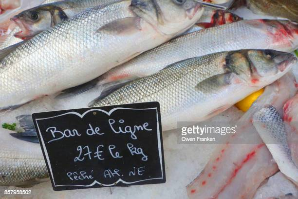 fish (sea bass)  for sale at a farmers market-Eperany, Champagne, France