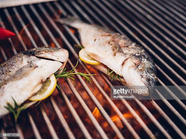 Fish grilling on a barbecue with lemon slices and rosemary