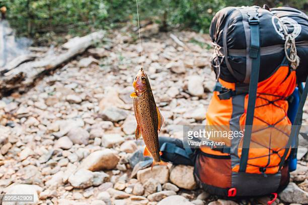 Fish hanging from fishing hook by backpack at lakeshore