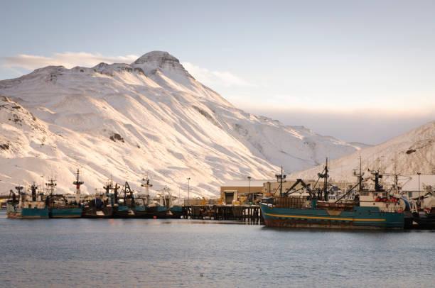 Fish harbor in Dutch Harbor, Alaska