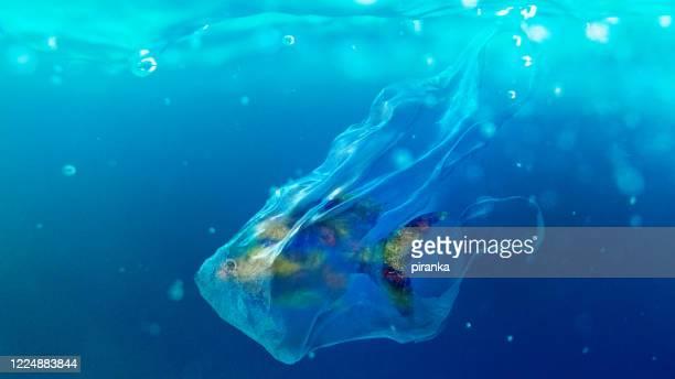 ビニール袋に入った魚 - プラスチック汚染 ストックフォトと画像