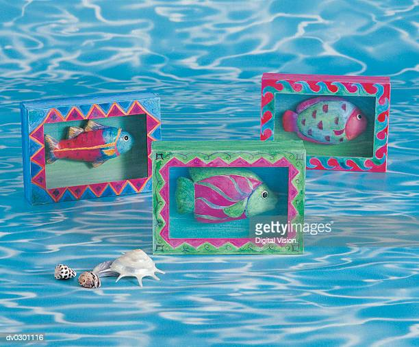 Fish in picture frames