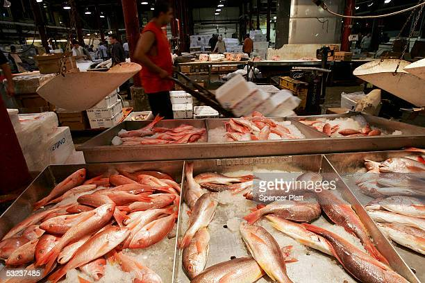Fulton fish market stock photos and pictures getty images for Fulton fish market