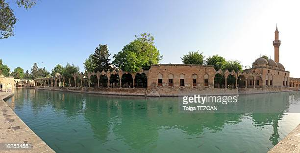 魚湖(Balikli Gol )、シャンルウルファ,Turkey