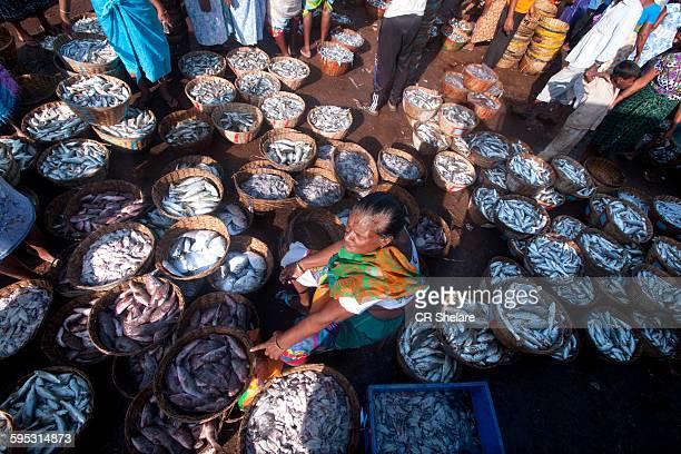 Fish Market, Margoa, Goa, India,