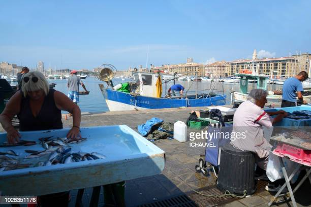 Fish market Marseille France