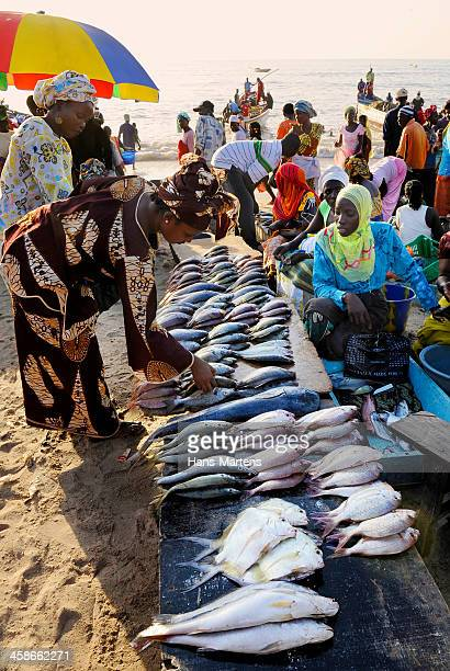 fish market on the beach in Tanji