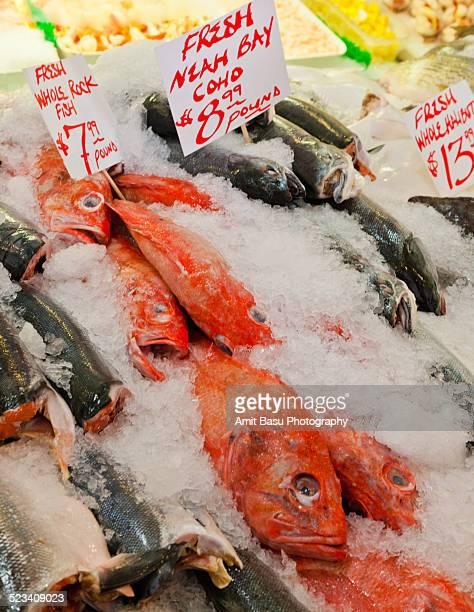 Fish market scene, Seattle