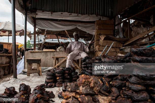TOPSHOT A fish merchant sits by the fish he is selling in the Baga fish market in Maiduguri on July 31 2017 The fish trade in Borno State has long...