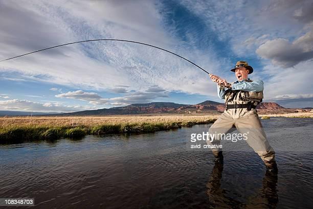 fisch auf! - beugen oder biegen stock-fotos und bilder