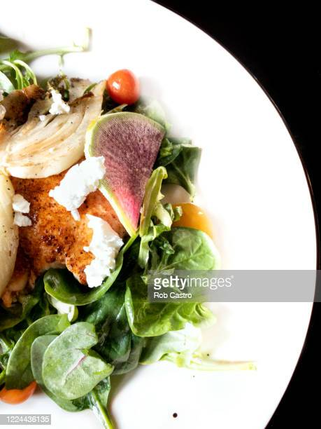 fish salad - rob castro stock pictures, royalty-free photos & images