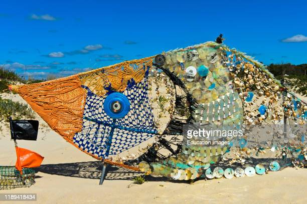 Fish sculpture made of shells and garbage collected on the beach ecoart A Rota do Sargo The Sargo Route Tavira Island Ilha de Tavira Tavira Algarve...