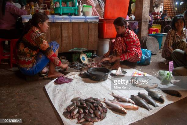 Fish sellers at Psar Leu market at the heart of this transport stop just outside Siem Reap to the east Angkor Cambodia This huge market entirely...