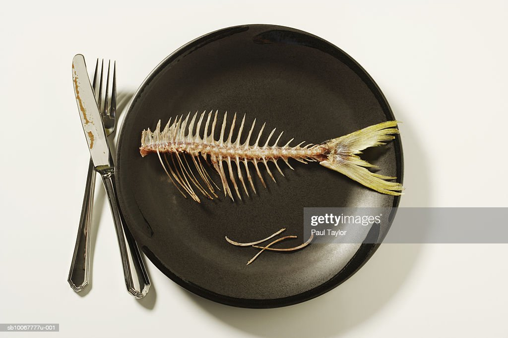 Fish skeleton on plate : Stock Photo