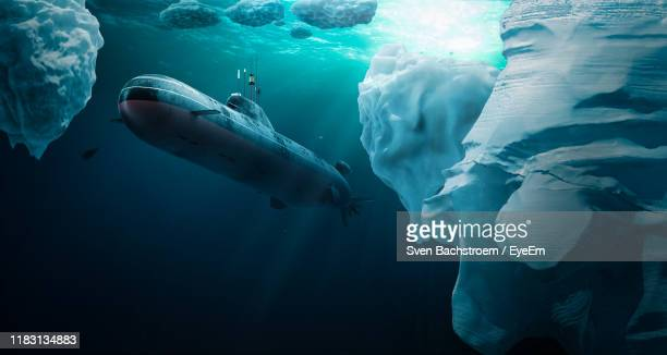 fish swimming in sea - submarine stock pictures, royalty-free photos & images