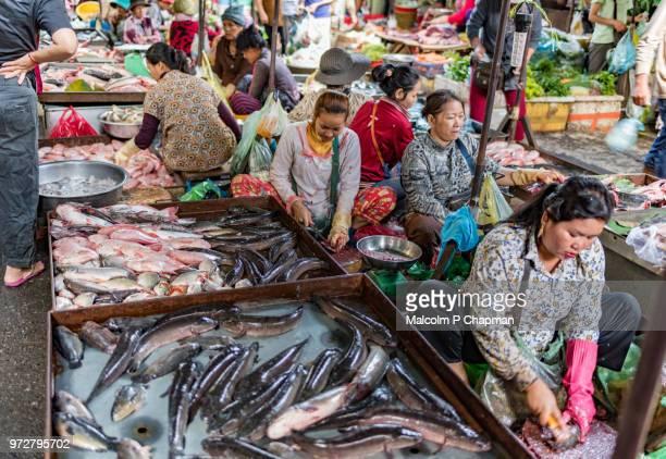 Fish traders, gutting and preparing fish at Phsar Kandal Market, Phnom Penh, Cambodia