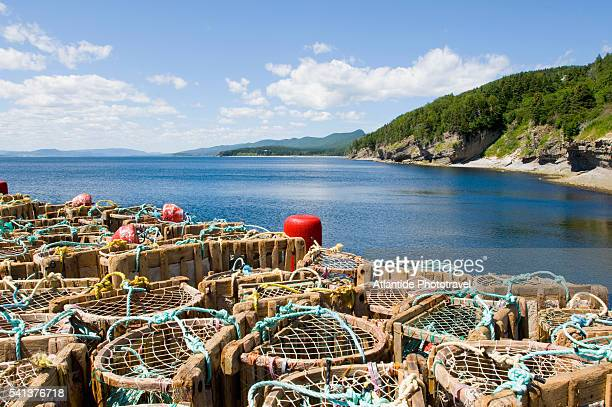 fish traps in forillon national park - forillon national park stock pictures, royalty-free photos & images