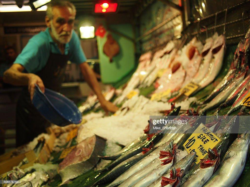 Fish vendor selling fresh fish : Stock Photo