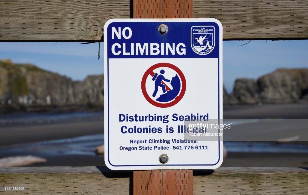Coastal Oregon scenics : News Photo