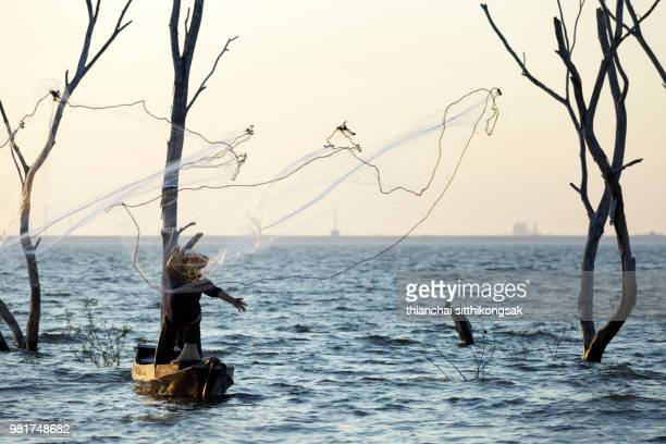 fisher man throwing fishing net on background of dead tree in river