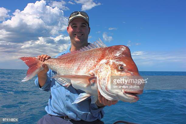 fisherman and red snapper australia - big fish stock pictures, royalty-free photos & images