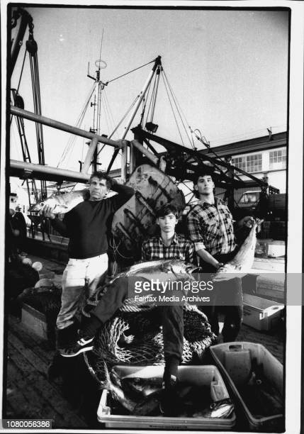 Fisherman giving away fish because of fishing regulationsDomonic Bagnato, son Richard and deck hand Marco Dintino. July 24, 1992. .