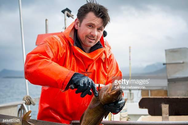 Fisherman gutting fish