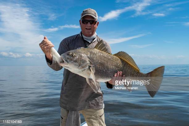 fisherman holding large black drum fish - big fish stock pictures, royalty-free photos & images