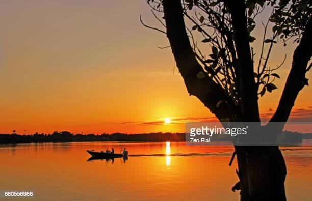 Fisherman in a motorboat at sunrise framed by silhouette of a tree in Florida, USA