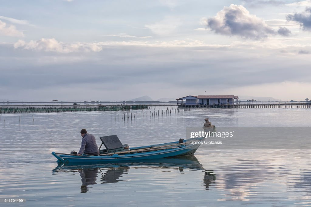 Fisherman in Mesologgi : Stock Photo