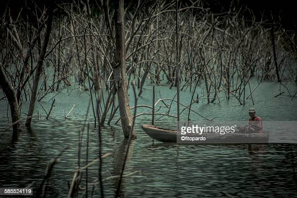 Fisherman in the rainforest