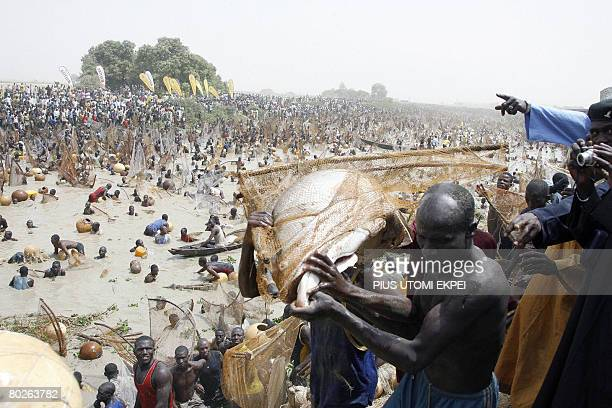 A fisherman is assisted to carry his catch to the weighing scale during the final of the Argungu fishing festival on March 15 2008Over 30 thousand...