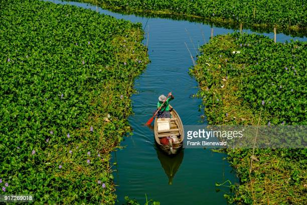 A fisherman is rowing his boat through the green vegetation on Taungthaman Lake seen from U Bein Bridge