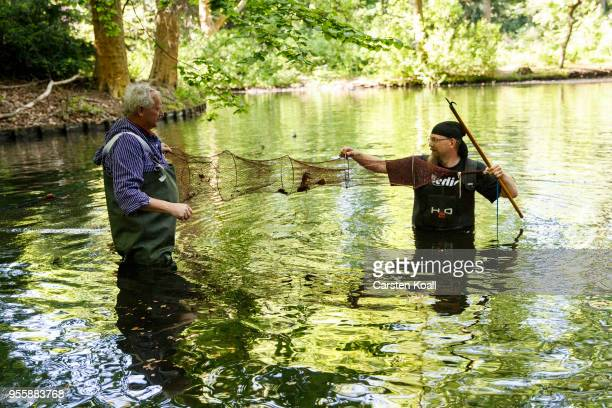 Fisherman Klaus Hidde and nature and landscape guide Malte Frerichs catching red swamp crayfish during a media opportunity in waters in Tiergarten...