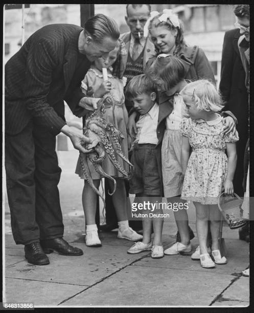 Fisherman Leslie Richardson shows an octopus to a group of children at his exhibition entitled The Wonders of the Deep Hastings 1951