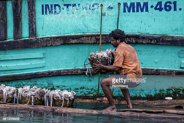 A fisherman loads baskets of squid onto a raft from a trawler near the Kasimedu fish market at the Royapurum fishing harbour in Chennai India on...